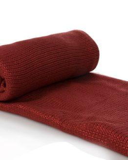 TV Blanket  Red 120x170 cm